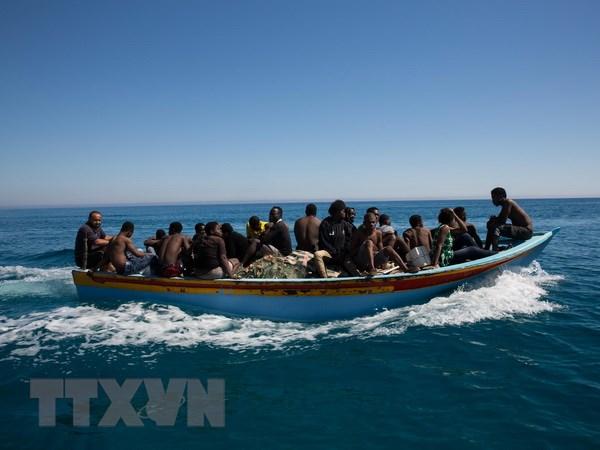 Italy phat hien them 8 thi the nguoi di cu ngoai khoi bo bien Libya hinh anh 1