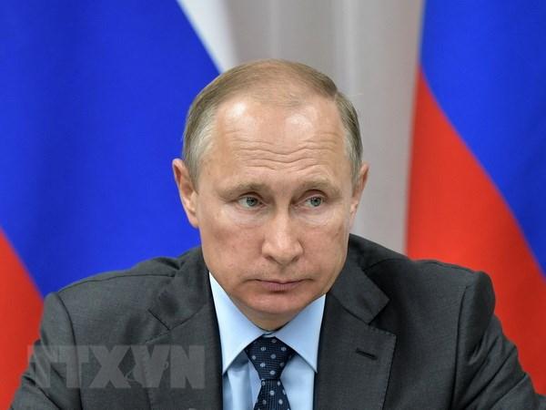 Thong tin ve kha nang tranh cu tong thong cua ong Vladimir Putin hinh anh 1