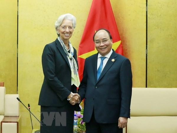 Viet Nam mong muon IMF tiep tuc tu van dieu hanh kinh te vi mo hinh anh 1