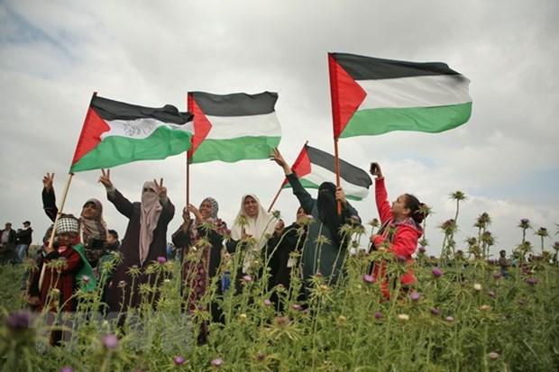 Tong thong Palestine tuyen bo Quoc tang tuong niem 16 nguoi chet hinh anh 1