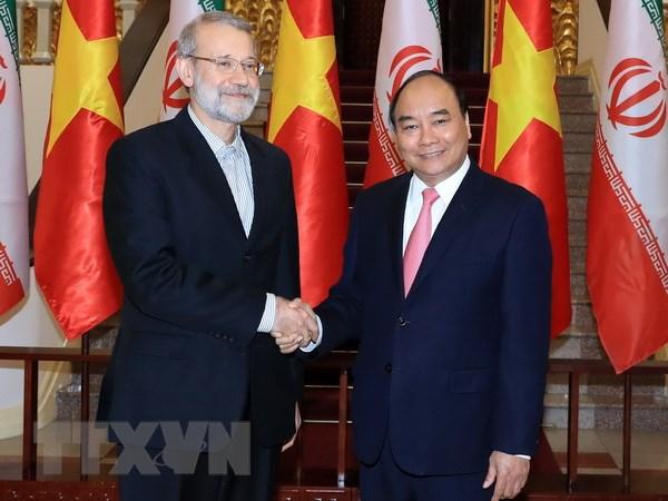 Viet Nam luon coi trong quan he huu nghi truyen thong voi Iran hinh anh 1