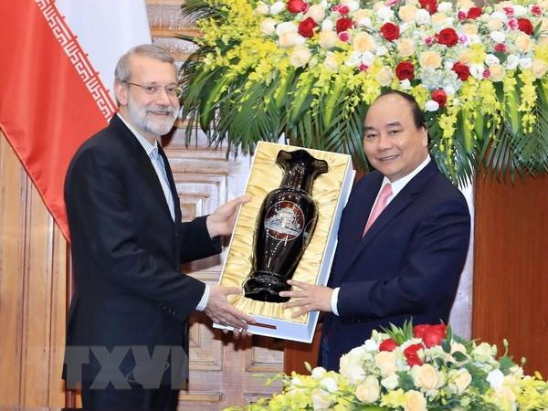 Viet Nam luon coi trong quan he huu nghi truyen thong voi Iran hinh anh 3