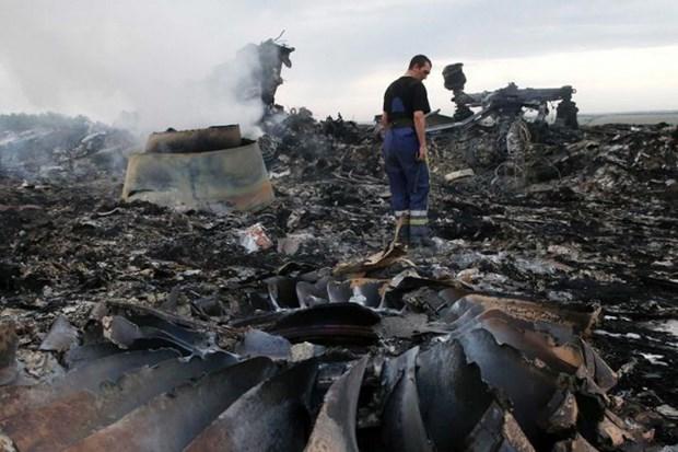 Dieu tra quoc te: Ten lua ban roi MH17 la cua lu doan phong khong Nga hinh anh 1