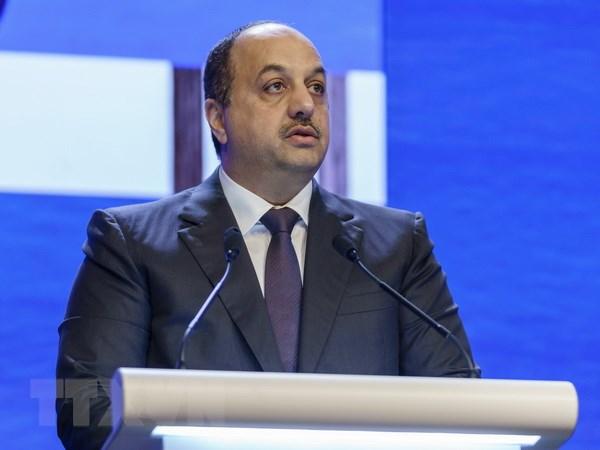 Qatar tham vong tro thanh thanh vien day du cua NATO hinh anh 1