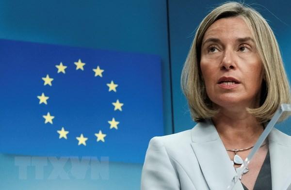 EU hoan nghenh ''lenh ngung ban lich su'' o Afghanistan hinh anh 1