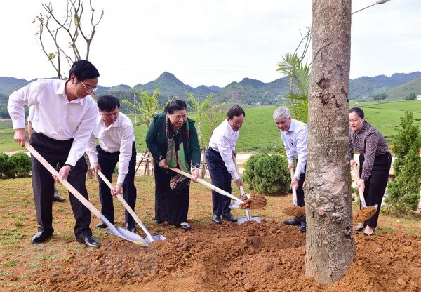 Pho Chu tich Quoc hoi Tong Thi Phong tiep xuc cu tri tai Son La hinh anh 3