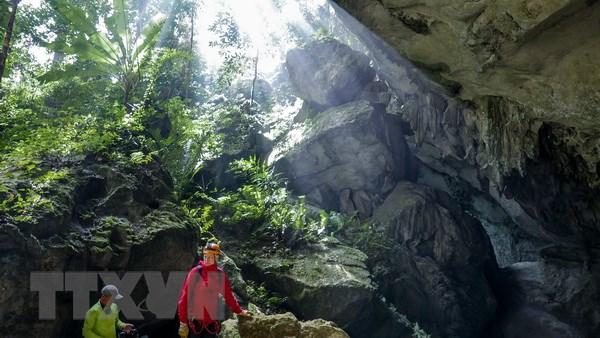 Phat hien 44 hang dong moi trong khu vuc Phong Nha-Ke Bang hinh anh 1