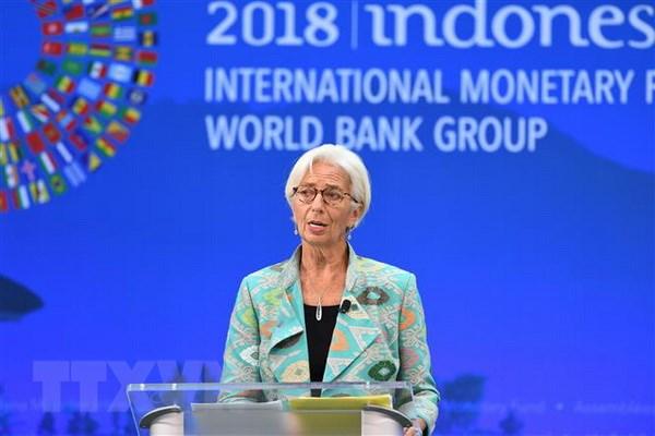 IMF bao ve chinh sach lai suat cua Ngan hang Du tru lien bang My hinh anh 1