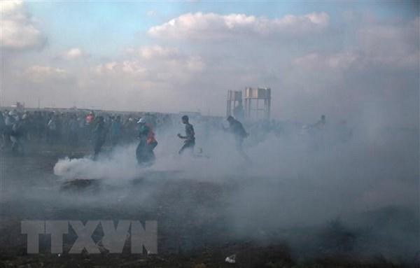 Hamas bac bo yeu cau cham dut bieu tinh tai bien gioi Gaza-Israel hinh anh 1