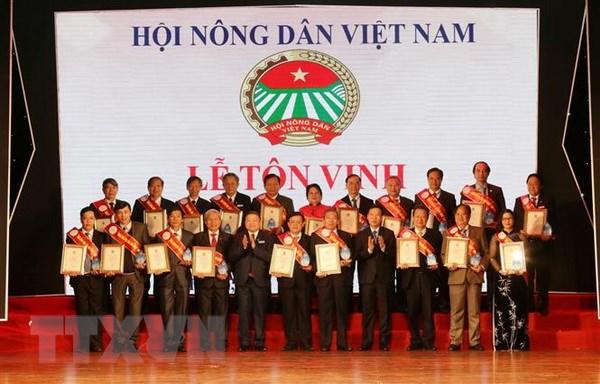 Dai hoi 7 Hoi Nong dan Viet Nam: Ton vinh 53 nha khoa hoc cua nha nong hinh anh 1