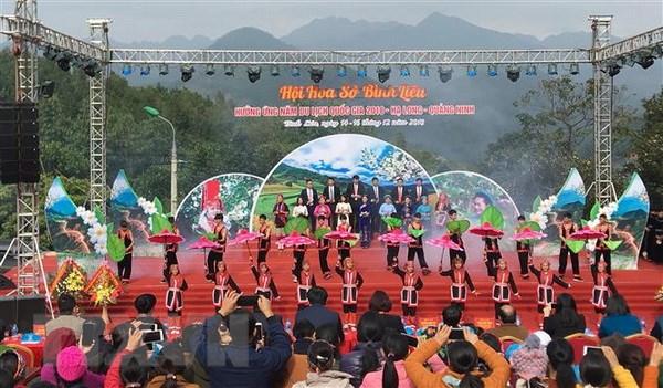 Quang Ninh: Khai mac hoi hoa So voi chu de Binh Lieu mua hoa So hinh anh 1