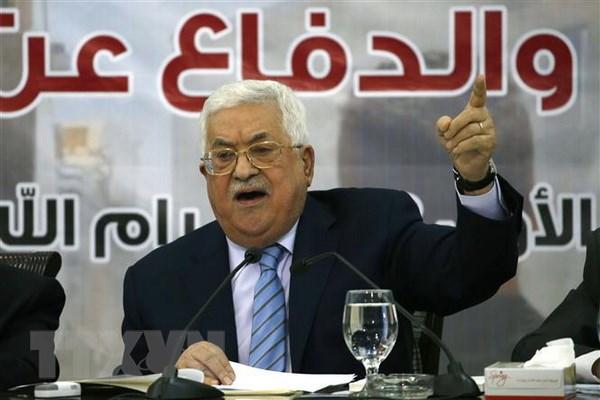Hamas co the gianh thang loi trong bau cu tai Palestine hinh anh 1