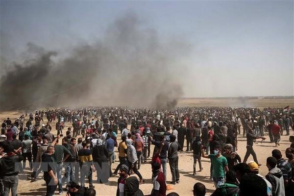 Phai doan Hamas se den Nga ban ve tien trinh hoa giai dan toc hinh anh 1