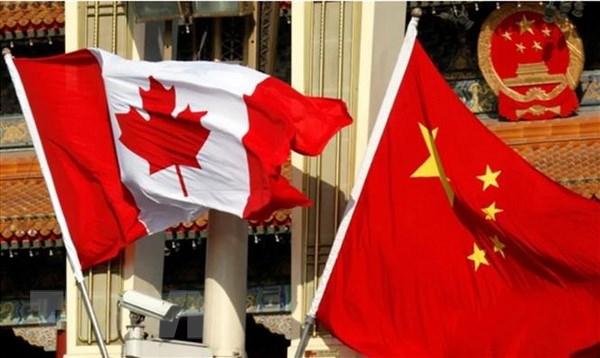 Dai hoc cua Canada lo ngai bi anh huong do cang thang voi Trung Quoc hinh anh 1