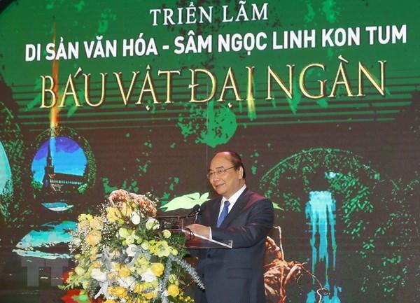 De sam Ngoc Linh ghi dau an lich su moi cho nganh duoc lieu Viet Nam hinh anh 2