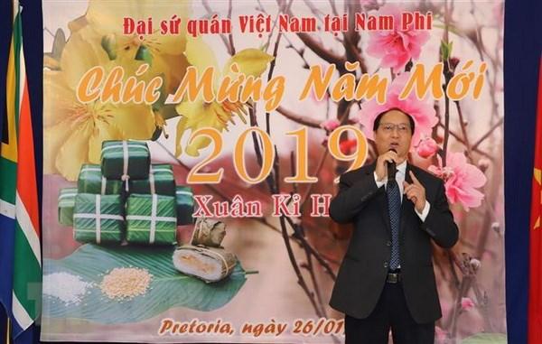 Cong dong nguoi Viet tai cuc Nam chau Phi vui don Tet co truyen hinh anh 1