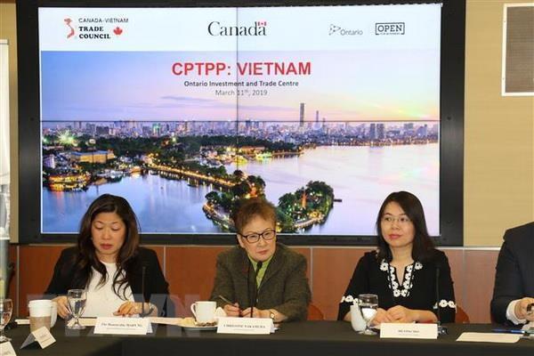 CPTPP mo ra nhieu co hoi cho cac doanh nghiep Canada va Viet Nam hinh anh 1