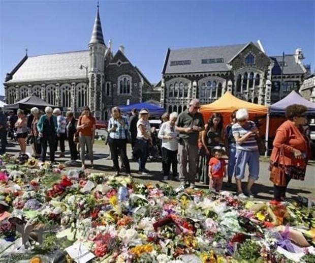 New Zealand: Cac den tho Hoi giao o Christchurch mo cua tro lai hinh anh 1