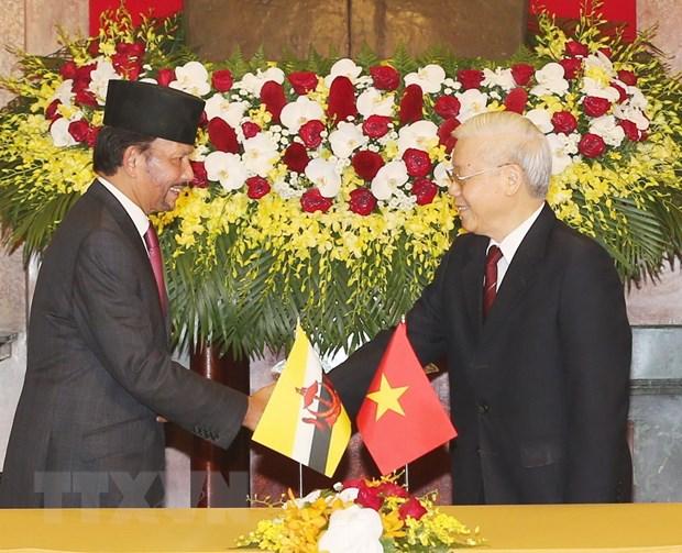 Dua quan he Viet Nam-Brunei len tam Doi tac Toan dien hinh anh 1