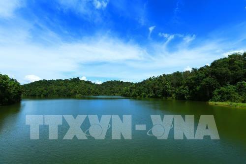 Can thanh lap Khu bao ton loai-sinh canh Pa Khoang-Muong Phang hinh anh 1