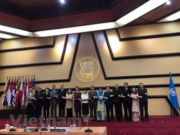 ASEAN va Lien hop quoc ra soat hop tac den nam 2020 hinh anh 1