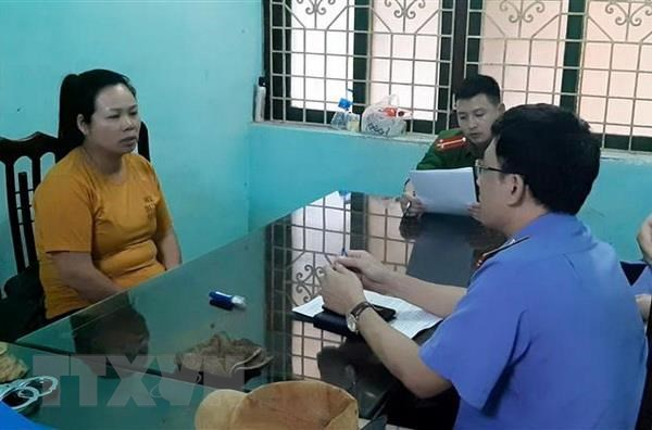 Nam Dinh: Triet pha duong day mua ban, van chuyen ma tuy so luong lon hinh anh 1