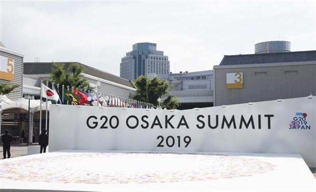 Chinh thuc khai mac Hoi nghi Thuong dinh G20 o Osaka hinh anh 1