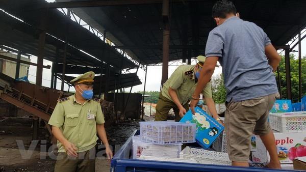 Binh Phuoc tien hanh tieu huy hon 1 tan trai cay nhap lau hinh anh 1