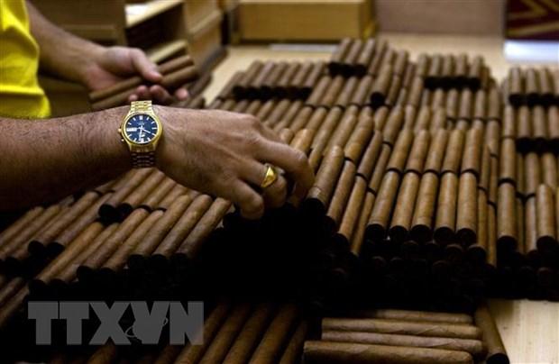 Brazil rut lai lenh cam ban cigar Cohiba noi tieng cua Cuba hinh anh 1