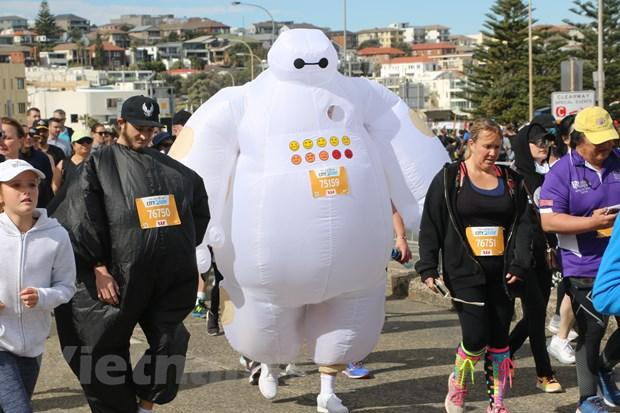 Australia: Hon 84.000 nguoi tham gia giai chay lon nhat the gioi hinh anh 1