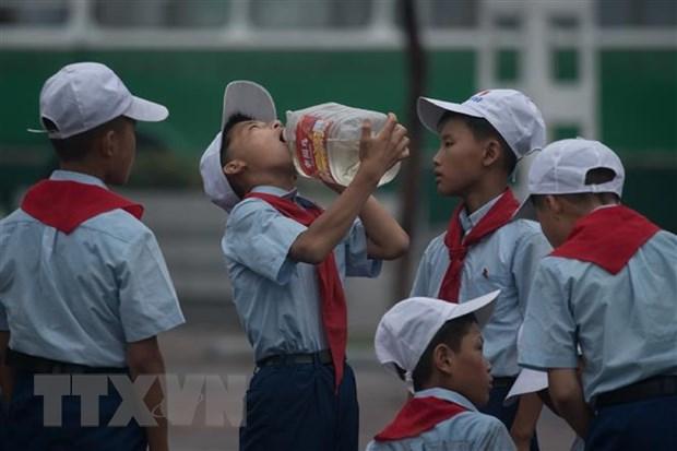 Han Quoc thao luan voi UNDP ve vien tro cho Trieu Tien hinh anh 1