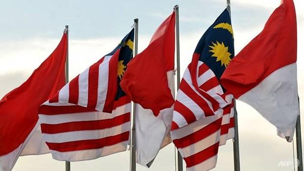 Malaysia, Indonesia su dung may bay khong nguoi lai tuan tra bien gioi hinh anh 1