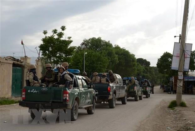 Taliban bac bo thong tin ve ke hoach ngung ban o Afghanistan hinh anh 1