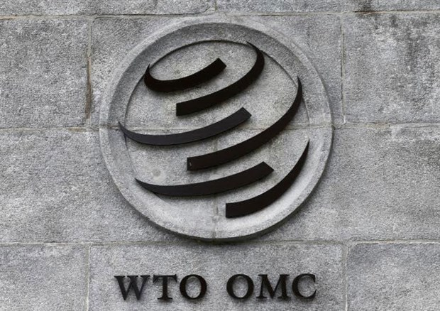 Tuong lai day thach thuc cua WTO sau 25 nam hoat dong hinh anh 1