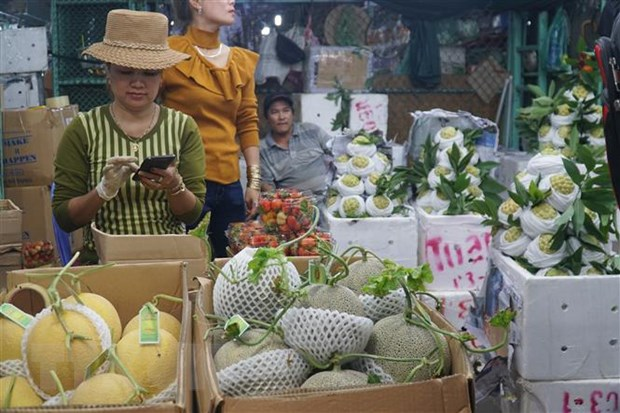 Hang hoa ve cho dau moi tai Thanh pho Ho Chi Minh doi dao cho dip Tet hinh anh 2