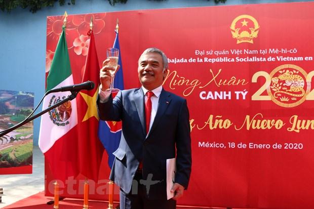Cong dong nguoi Viet tai Mexico mung Xuan Canh Ty 2020 hinh anh 1