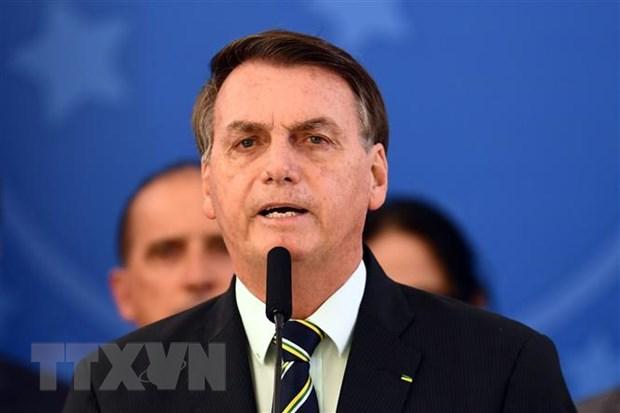''Phuong thuc quan ly cua Viet Nam la hinh mau cho Brazil hoc hoi'' hinh anh 1