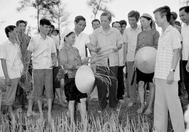 Tong Bi thu Nguyen Van Linh: Nguoi khoi xuong cong cuoc doi moi hinh anh 2