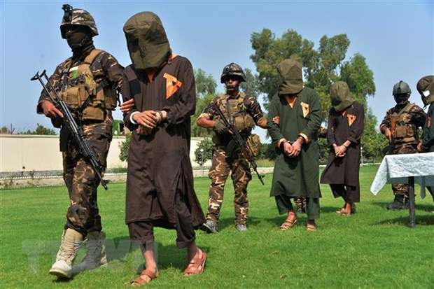 Taliban san sang hoa dam sau khi hoan tat thoa thuan trao doi tu nhan hinh anh 1