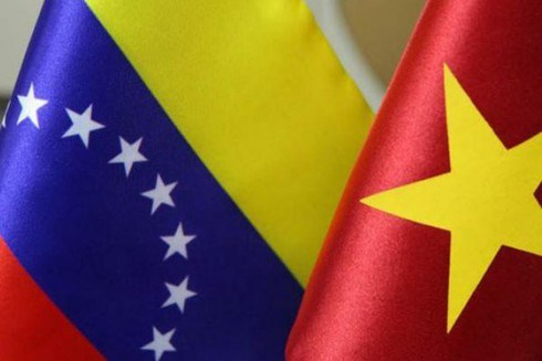 Tham khao Chinh tri cap Thu truong Ngoai giao Viet Nam-Venezuela lan 8 hinh anh 1