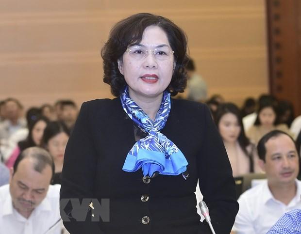 Ba Nguyen Thi Hong duoc gioi thieu lam Thong doc Ngan hang Nha nuoc hinh anh 1