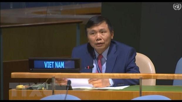 Viet Nam ung ho cai to HDBA theo huong mo rong so thanh vien hinh anh 1