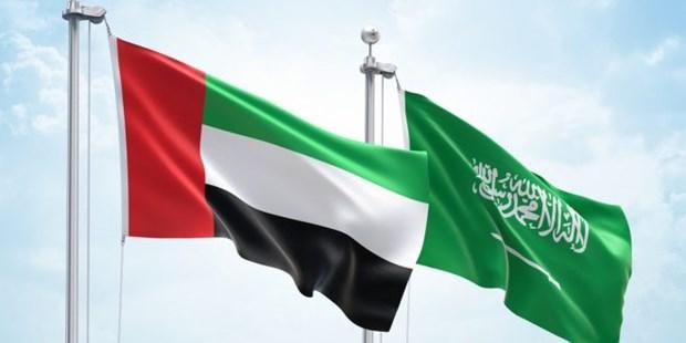 UAE ung ho no luc cua Saudi Arabia giai quyet khung hoang Vung Vinh hinh anh 1