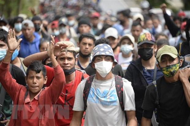 Guatemala ngan chan hon 4.000 nguoi Honduras vuot bien trai phep hinh anh 1