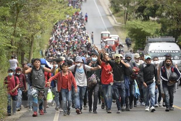 Guatemala ngan chan hon 4.000 nguoi Honduras vuot bien trai phep hinh anh 2
