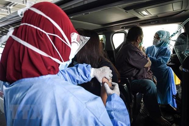 Indonesia phat hien 48 ca nhiem bien the virus SARS-CoV-2 tu Nam Phi hinh anh 1