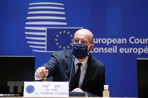 EU to chuc hoi nghi thuong dinh truc tuyen do dich COVID-19 phuc tap hinh anh 1