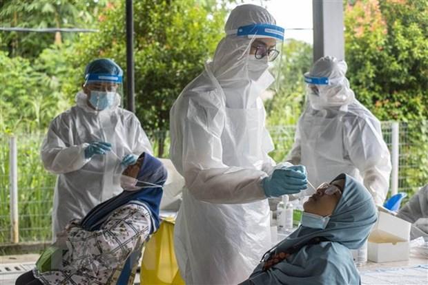 Malaysia co the tro thanh noi lay lan virus SARS-CoV-2 sieu dot bien hinh anh 1