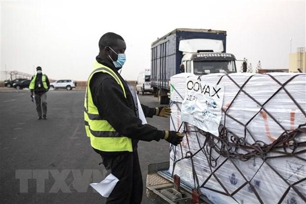 Nhân viên bốc dỡ các thùng vaccine ngừa COVID-19 được viện trợ theo chương trình vaccine COVAX toàn cầu tại Dakar, Senegal. (Ảnh: AFP/TTXVN)