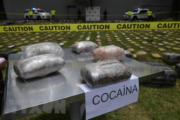 Colombia thu giu 116 tan cocaine trong chien dich ma tuy da quoc gia hinh anh 1